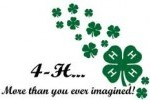 4-H More Than You Ever Imagined
